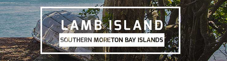 Lamb Island - Southern Moreton Bay Islands
